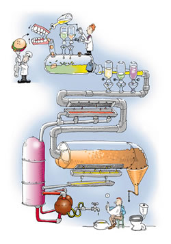http://www.eregimens.com/images/regimens/digestion.jpg
